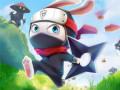 Žaidimai Ninja Rabbit